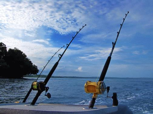 Fishing Charter  Business