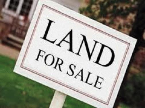 Large Plot Of Land For Sale