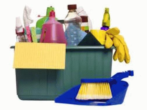 Property Cleaning Business